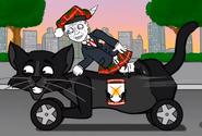 Black Cats Car