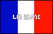 France flag logo.png