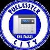 Leicester City logo Puel