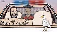 Seagull Eric Cantona