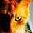 Vuurster 1's avatar