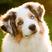 Jsutterfield's avatar