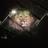 XXsavage nationXx's avatar