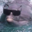 Dolphingeneral's avatar
