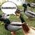 Duckieboy01