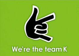 AKB48 Flag TeamK.jpg