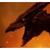 Rodan the fire demon2019