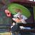 Marie Agent 2
