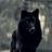 OkawaiicupcakeO's avatar