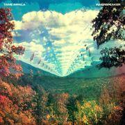 Tame Impala Innerspeaker cover-1-.jpg