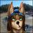 NeVeRsOfT9's avatar