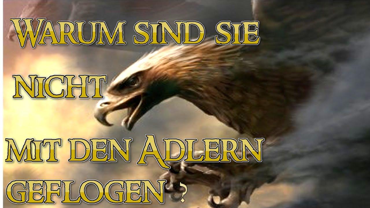 Warum sind die Gefährten nicht mit den Adlern geflogen?(Fan Theorie)