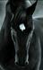 ChaosAndMagic's avatar