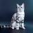 Kot22jkjgh's avatar