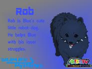 Rob profile