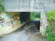 Tunnelbakken.jpg