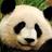 Pandalonian's avatar
