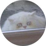 Sumwan's avatar