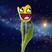 ElTulipan's avatar