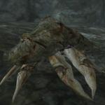 Грязекраб-торговец's avatar