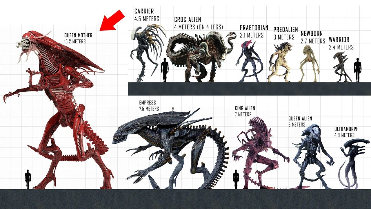 XENOMORPH Size Comparison