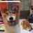 Frederffrederffrederffrederf's avatar