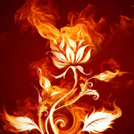 Flaming679's avatar