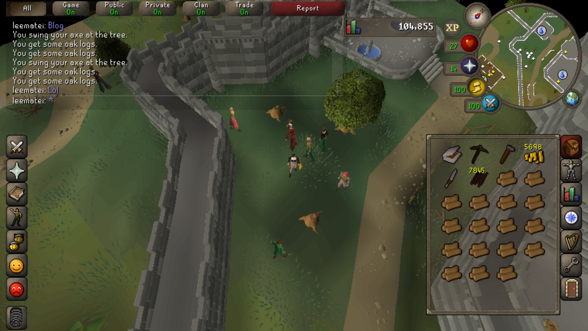 Bots Everywhere OSRS Mobile