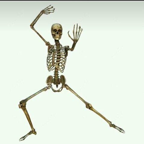 Esqueleto antiotakus