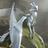 Trinket9's avatar