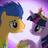 Flash support's avatar