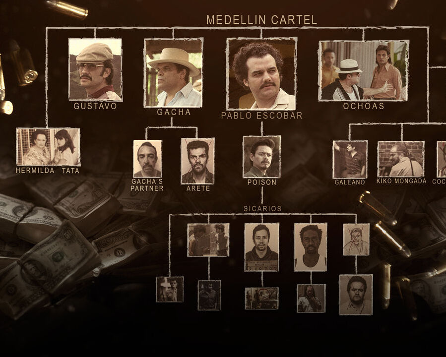 Narcos drug lord chart