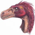 Sootball's avatar