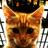 Nastya konovalenko's avatar