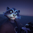 SamuRaccoon's avatar