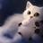 XXGamerGirlIcyXx's avatar