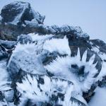 Ледяной Феникс