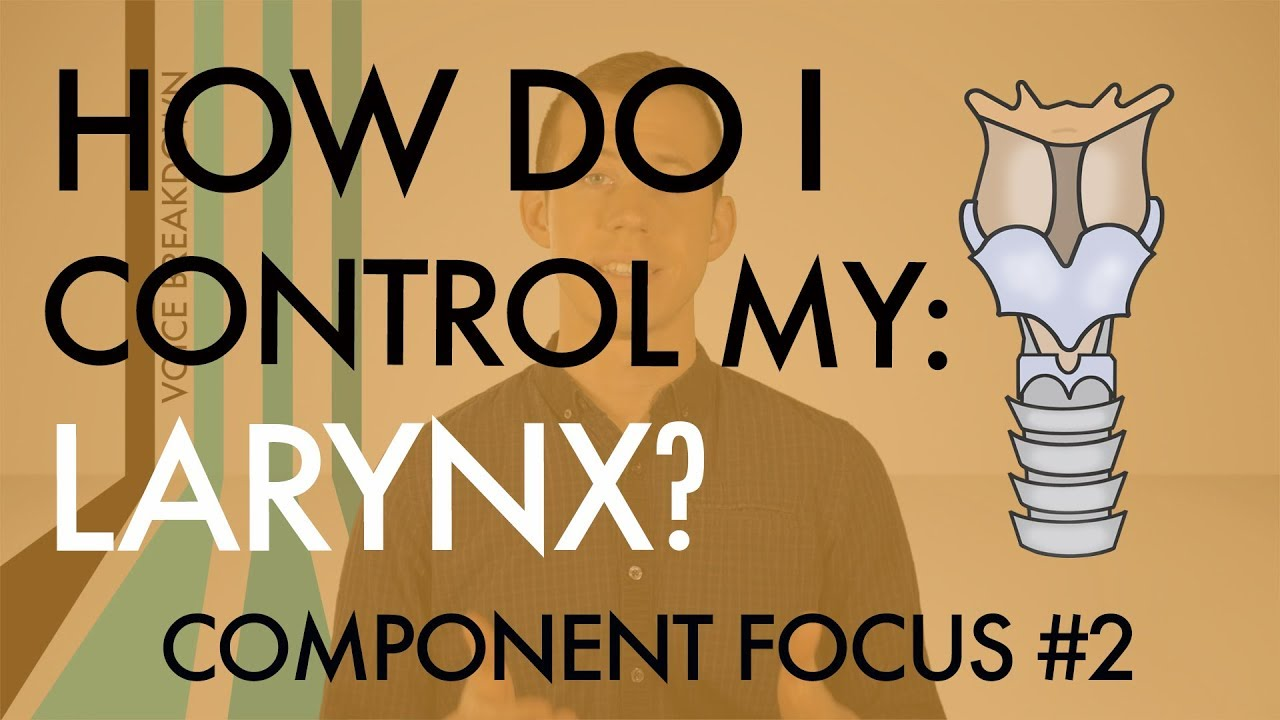 "Component Focus #2 - ""How Do I Control My Larynx?"" - Voice Breakdown"