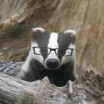 Ox Rookbane