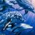 Silverykittencat