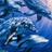 Silverykittencat's avatar
