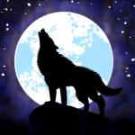 Inffinite Wolf's avatar