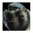 Phantomsanic360's avatar