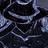 AdventureFredbear's avatar