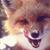 Eboni Fox