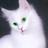 Половинка Луны Камнесказительница's avatar