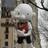 Oreosarethebest77's avatar