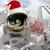 Regawin the Astronaut