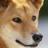 TheShyK9's avatar