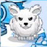 Tatsumaki Up Sinta's avatar